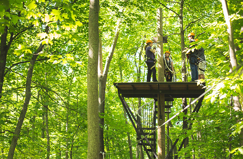 Four zipliners stand on the spiral stair case platform